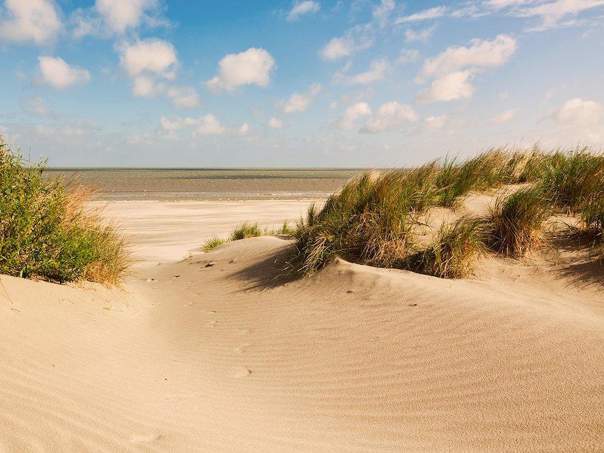 Top 18 Ferienhäuser Ferienwohnungen Belgische Küste ᐅ Sofort Buchbar