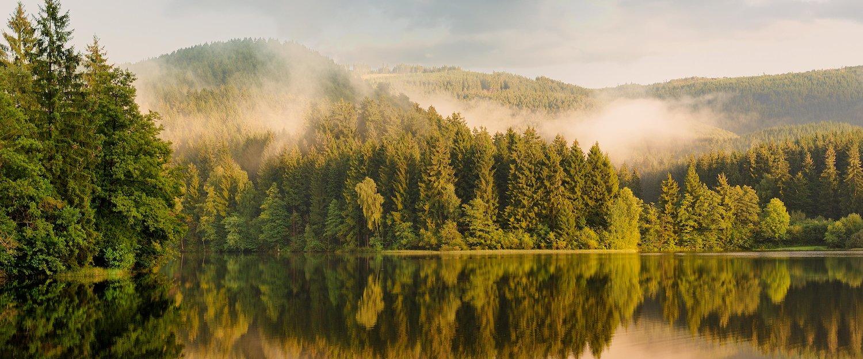 Endlose Wald- und Seelandschaften im Harz
