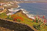 Ponta Delgada Madeira