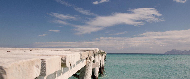 Vakantiehuizen in Playa de Muro