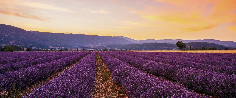 Locations de vacances dans le sud de la france pas cher for Booking sud de la france