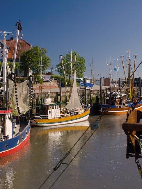 Hafen mit Krabbenboote, Neuharlingersiel
