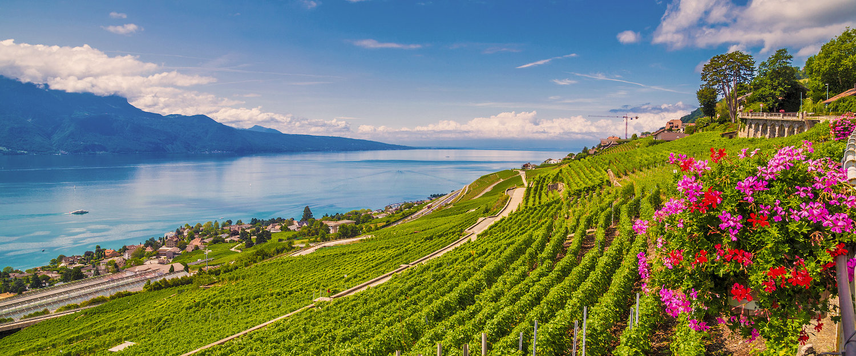 Panoramablick auf den Genfer See