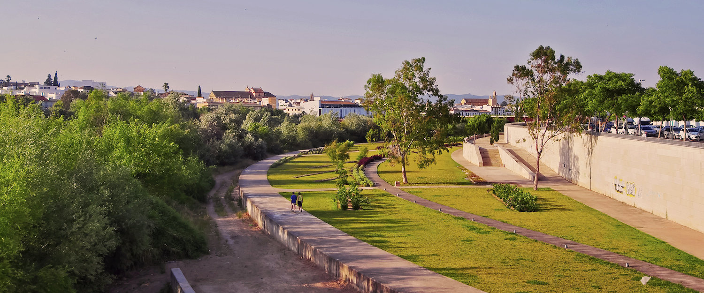 La cuenca del Guadalquivir