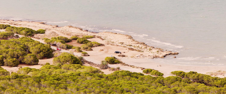 Playa y vegetación de Santa Pola