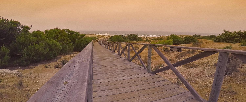 El paseo a la playa