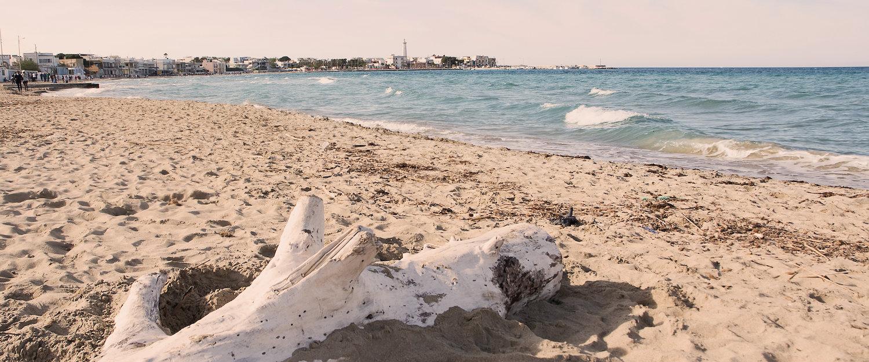 Spiaggia di Fasano.