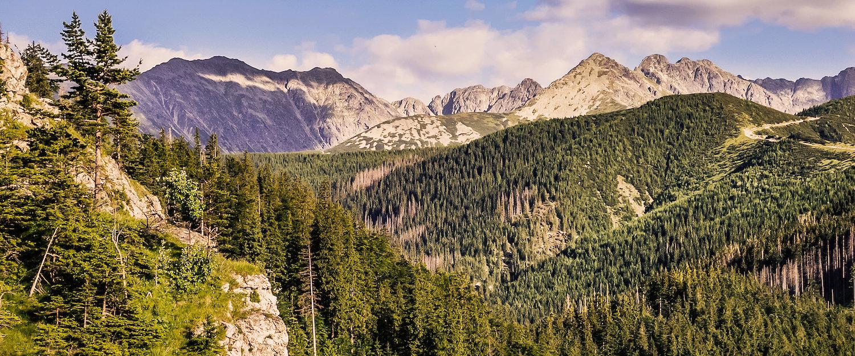 Poronin otaczają piękne krajobrazy